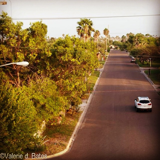 Looking down Musina Street towards South Shore Drive #portisabeltx #portisabel #portisabeltexas Late summer and so green!