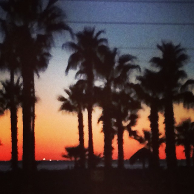 #southpadreisalnd #spi #sunset #texastodo #palmtrees Why we love where we live!