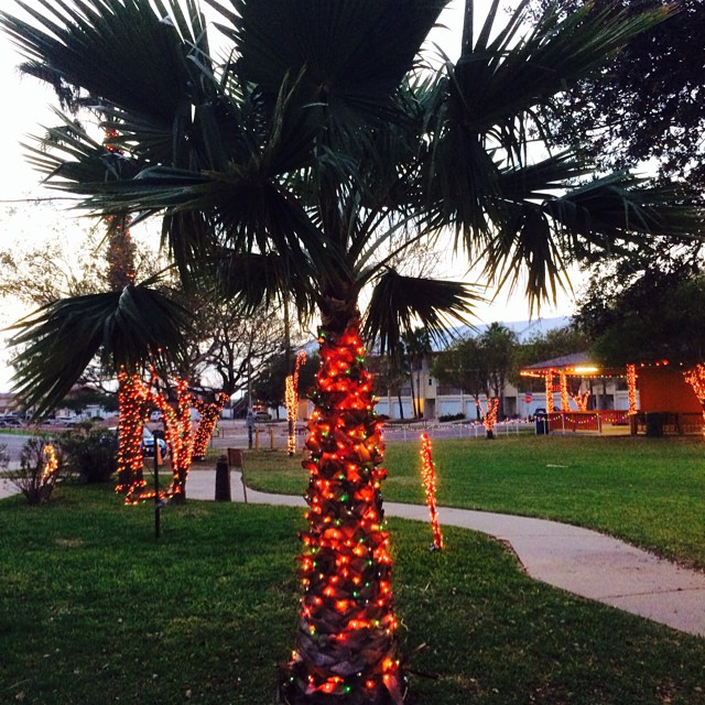 Decorated for Christmas, Port Isabel is! Beulah Lee Park! #texastodo #christmastree #portisabel